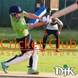 cricket-club aschaffenburg